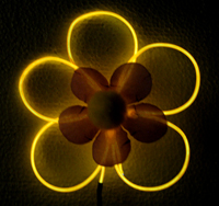 Glowing flowers with 5 petals