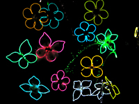 Glowing flower pins