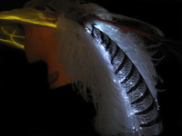 Glowing hat with white feathers
